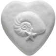 Wholesale Circle of Life Eco Urn: Nautilus and Starfish Heart