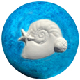 Wholesale Circle of Life Eco Urn: Nautilus Shell Painted