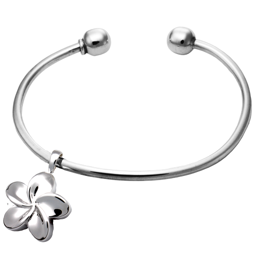 Pet Cremation Jewelry Ball Cuff Urn Bracelet