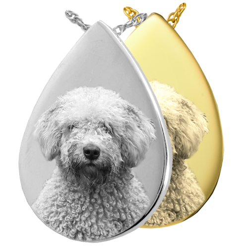 Wholesale B&B Teardrop Pet Photo Jewelry shown in silver and gold
