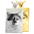 Wholesale B&B Rectangle Pet Photo Jewelry shown in silver and gold options
