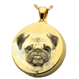 Gold-plated Round Pet Photo Jewelry with chamber