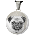 Stainless Steel Round Pet Photo Jewelry with chamber