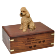 Wholesale Apricot Poodle with Sport Cut Wood Urn with engraved front
