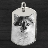 Pet Photo Jewelry